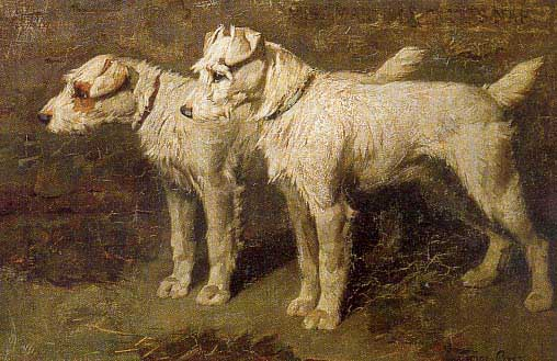 Political and Environmental History of Terriers