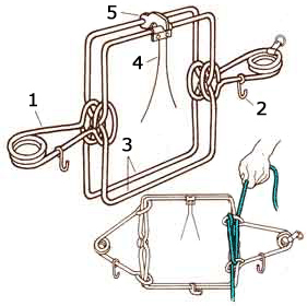 One of Terrier Man's  body-grip trap-release diagrams.